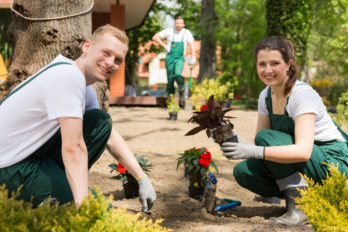 Fresh Gardens For Those Who Love Gardens Lots Of Images Of Inspiration From Mifgs 2015 Garden Garden Design Love Garden